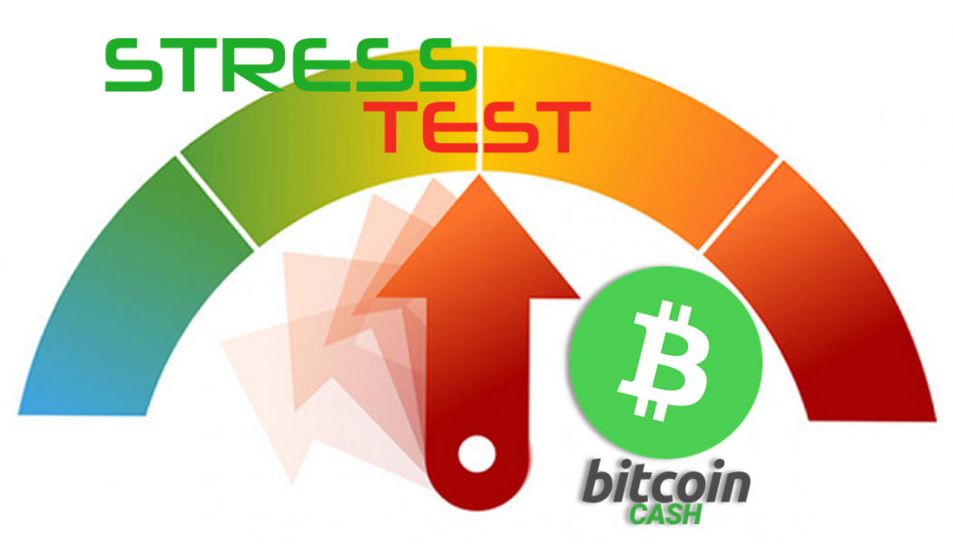 Bitcoin Cash (BCH) accusa stress test da decentramento